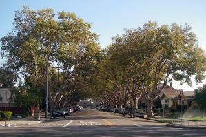 Encinal and Park - Carpool Location
