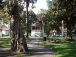 Jackson Park, Alameda  01